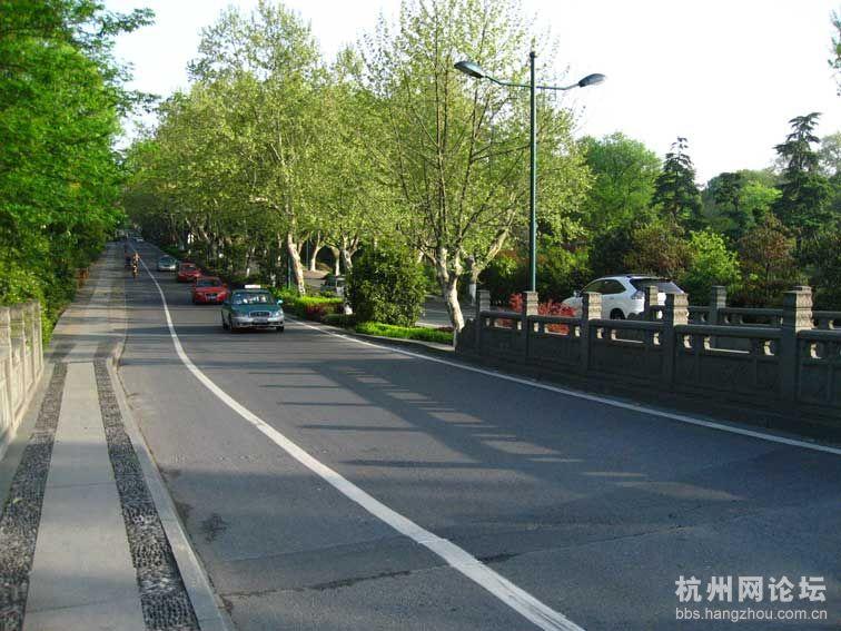 有感于 杨公堤上 轿车险些冲进西湖高清图片